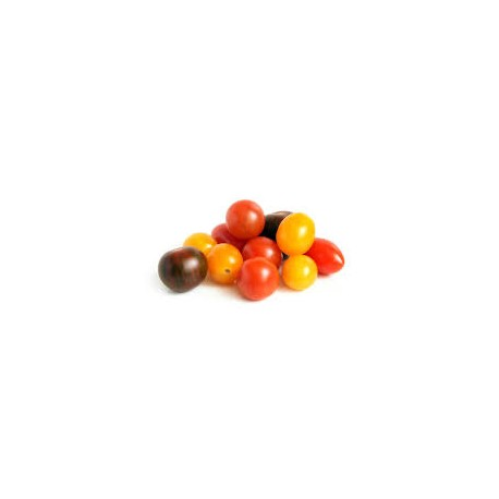 Tomate cherry mezcla ECO,precio por kg