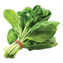 Espinacas granel