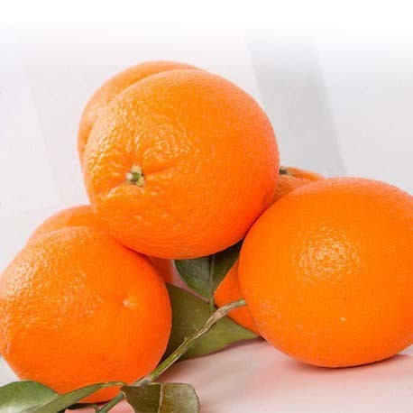 Naranja mesa BIO (Valencia) el Kg