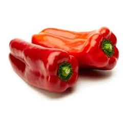 Pimiento lamuyo rojo (para asar) BIO,precio por 100 gramos