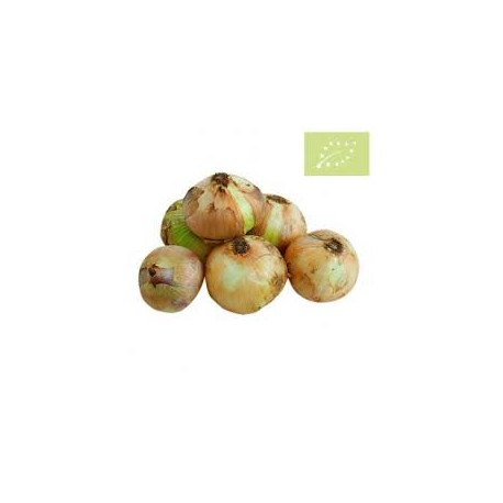 Cebolla semiseca BIO (Granada) el Kg