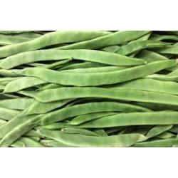 Judia verde plana BIO, precio por 100 gramos