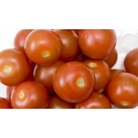 Tomate cherry redondo BIO (Granada) el Kg