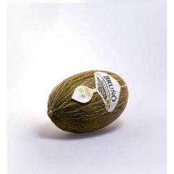 Melon piel de sapo BIO BRUÑO