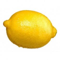 Limon BIO
