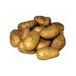 Patata nueva BIO (Málaga) el Kg